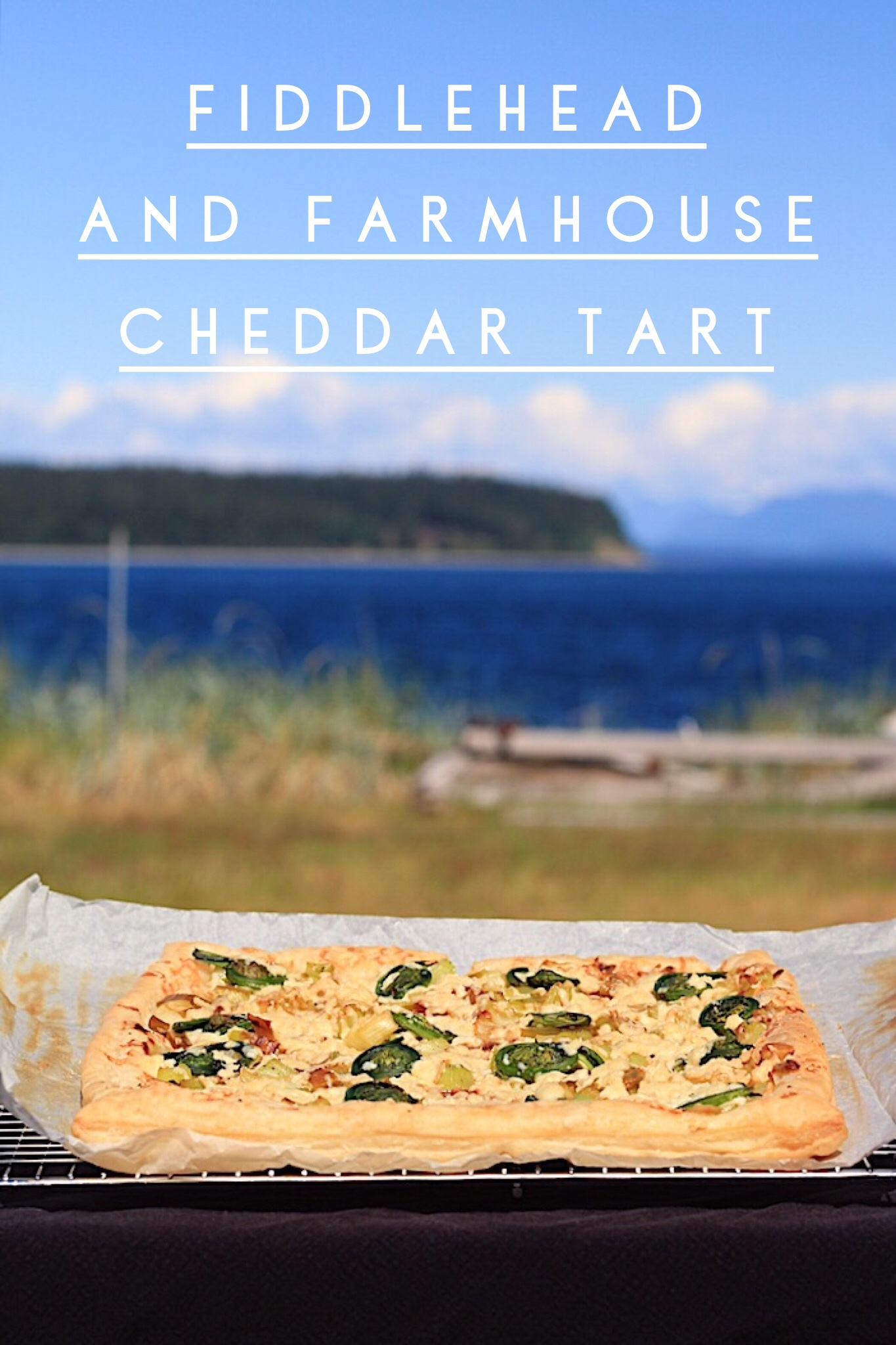 Easy and Delicious Fiddlehead and Farmhouse Cheddar Tart