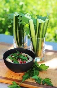 Healthy High Fiber Dip With Cucumber
