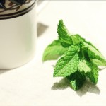 Fresh Peppermint for Tea