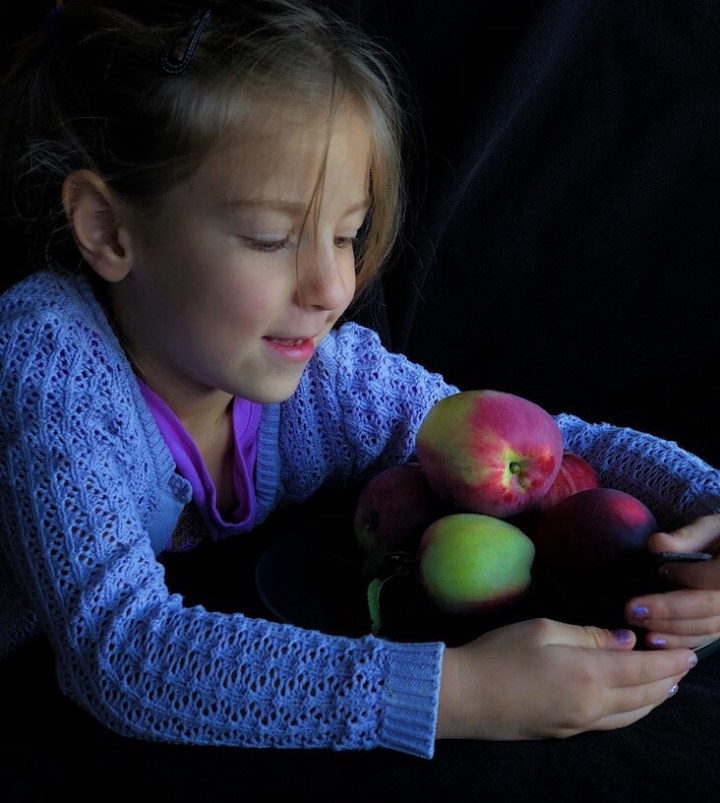 Apple Season On Vancouver Island