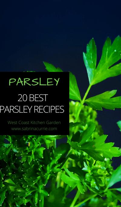 20 Best Parsley Recipes