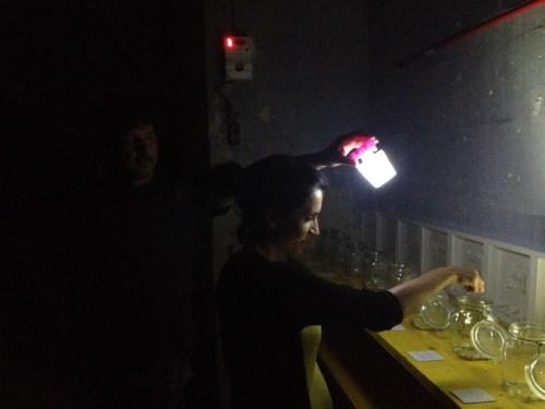 """Sabrina D'Alessandro, """"VI Censimento Peculiare - in cui si elegge il difetto più attuale"""", Fondazione Lac O Le Mon, Lecce 2016, URPS, Ufficio Resurrezione Parole Smarrite"""