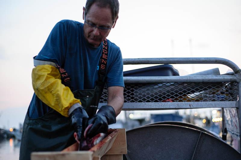 fisherman's wharf steveston richmond bc 2014