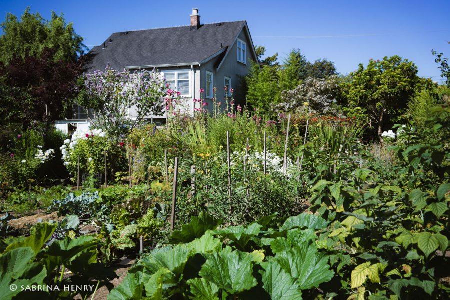 Kay Sakata's house and garden in Steveston Village