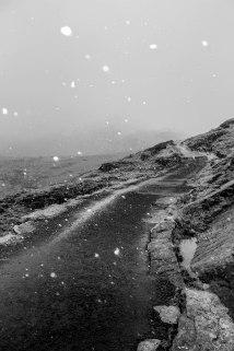 snow-in-monochrome