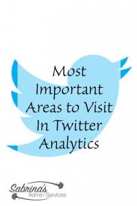 Most Important Areas to Visit In Twitter Analytics