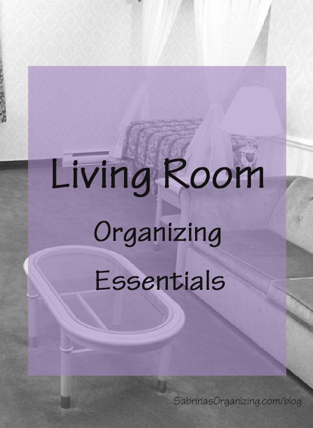 Living Room Organizing Essentials  Sabrinas Organizing