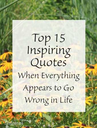top 15 inspiring quotes when Everything Appears to go wrong in life