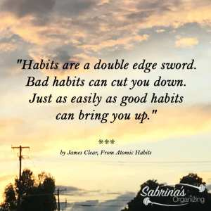 Habits are a double edge sword. Bad habits can cut you down. Just as easily as good habits can bring you up. - James Clear, From Atomic Habits