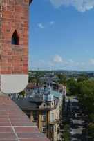view from the watch tower