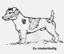standard-bild2a