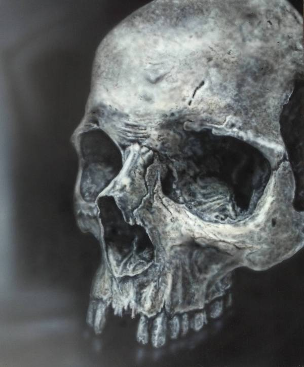 Realistic Airbrush Art Skull