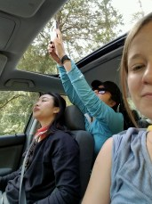 basically, how our car rides went