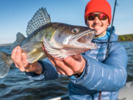 bass fishing guides