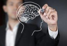 brain health tips