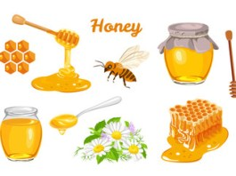 The Benefits of Honey - A Detailed Discussion