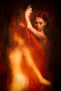 """3rd Place: """"Flamenco"""" by Vladimir Morozov from Wexford Camera Club Copyright © Notice: This image is protected under Irish & International copyright law."""