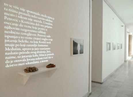 Dejan Atanackovic, The Disappearing of Professor Petrović 2014, photographic series (C-print 50x36m each) video projection of a text, a shelf with objects