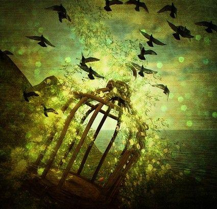 Image result for the caged bird