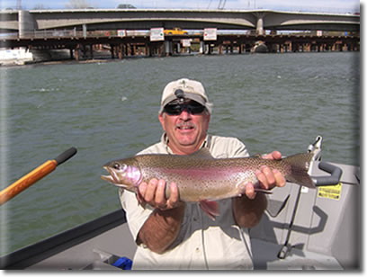 Sacramento River Fly Fishing Guide Service
