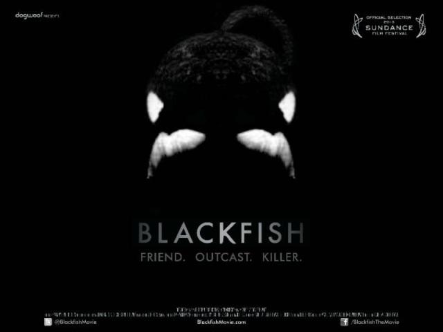 Cowperthwaites blackfish as an example of propaganda