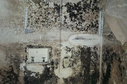 mold (10)