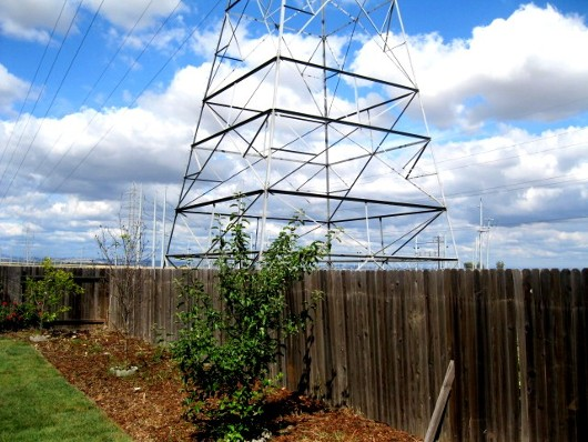 Photo of high voltage tower by Sacramento Appraiser