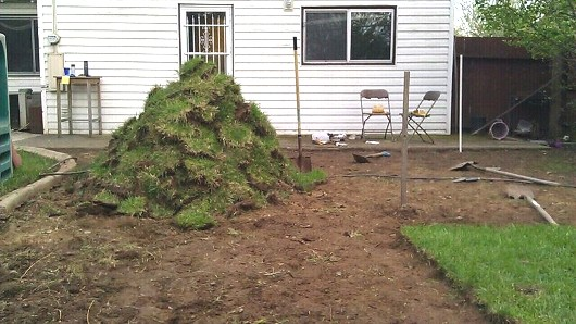 Progress on removing sod in the rear yard