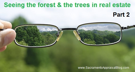 The forest and the trees image - sacramento appraisal blog - image purchased and used with permission from 123rf dot com