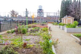 Brooks Truitt Community Garden