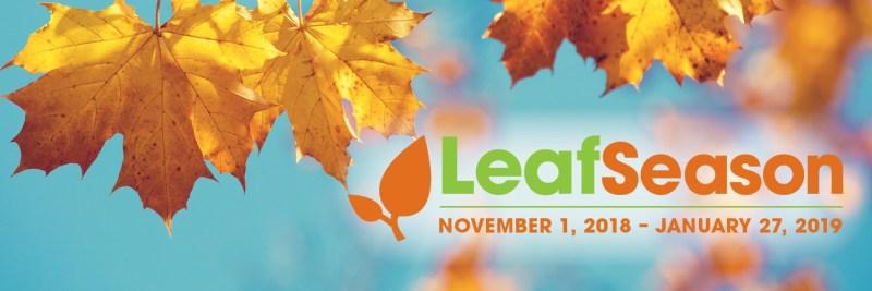 2018 leaf season banner