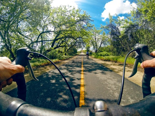 A pleasent warm day on the American River bicycle trail.