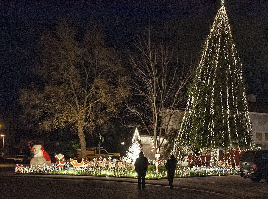 Cal Expo Christmas Lights.A Visit To Candy Cane Lane Sacramento Press