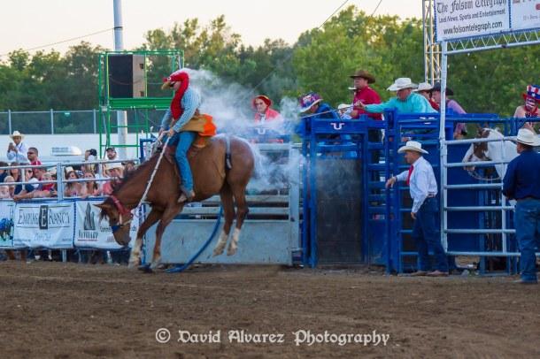 54th Annual Folsom Pro Rodeo Wows Audiences Sacramento Press