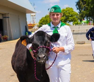 Jessica Smith showcasing Blackjack at the  Livestock Competition during the Sacramento County Fair.