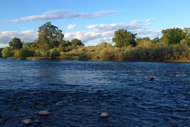 7 places to escape the sacramento heat sacramento press for Lake clementine fishing