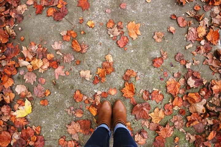 Fall in Sacramento 2017 20 720x480 - Sacramento: Best City in California for Fall Colors?