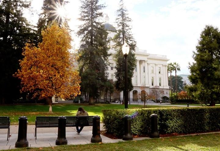 Fall in Sacramento 2017 5 720x494 - Sacramento: Best City in California for Fall Colors?
