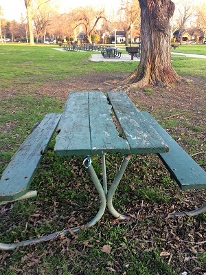 Picture of McKinley Park picnic table