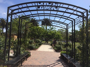 Picture of McKinley Park Rose Garden - Arch and Benches