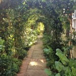East Sacramento Edible Gardens Tour