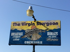 Picture of The Virgin Sturgeon Sign