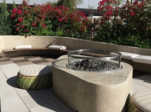 Photo of Revival Firepit