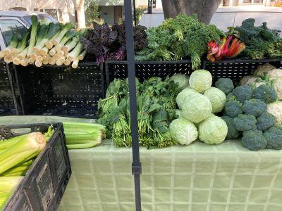 Photo of Winn Park Farmers Market produce