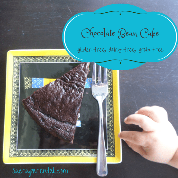 chocolate bean cake, great gluten-free cake recipes, dairy-free cake recipe, cake using beans, using beans and legumes in baking, Christian parenting, feminist parenting