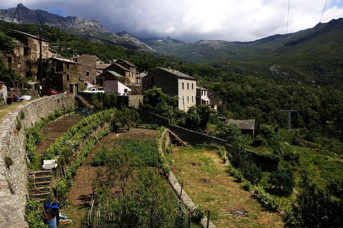 Sacré Cap Corse - Hameau de Lainosa d'Olcani
