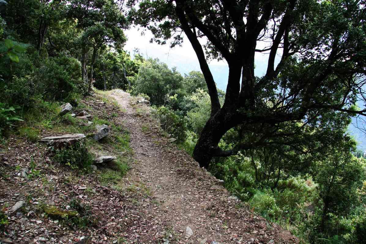 Sacré Cap Corse - Une partie du Chemin de Lumière près du hameau de Petricaghju à Barrettali