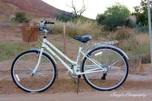 Schwinn Bikes Sacred Cheryl