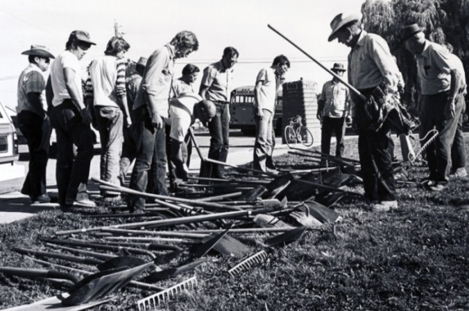 Figure 37. Men, choose your weapons. Volunteers getting ready to go to work