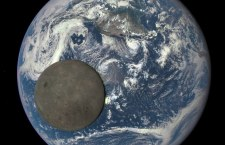 The space rock passed within 50,000 miles (80,000 km) of Earth. For comparison, the average distance to the moon is 239,000 miles (384,000 km)
